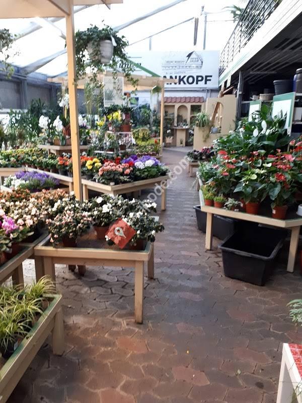 Blumen Hagen