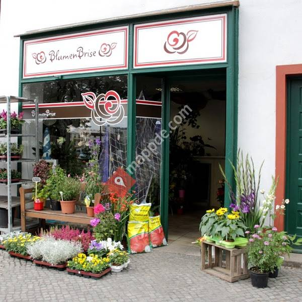 BlumenBrise